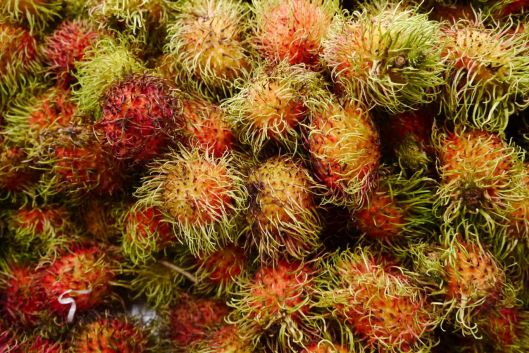 Rambutan still our favourite fruit.