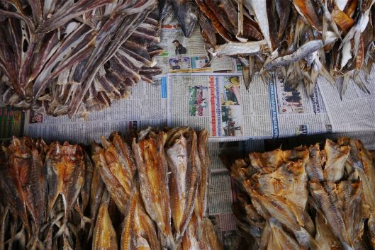 Dried fish.