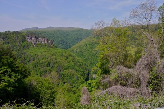 """""""The Grand Canyon of the South"""",View into Breaks Interstate Park."""